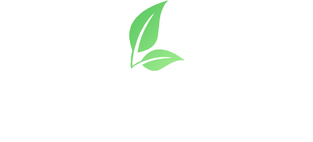 FOCUS FORESTRY